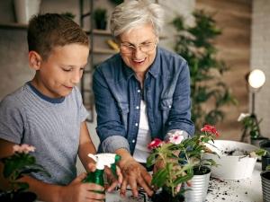Activités et exercices pour personnes âgées