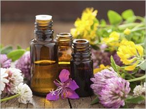 Quelles sont les huiles essentielles indispensables ?