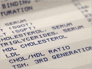 Tout savoir sur le cholestérol