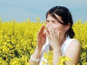 Calendrier des allergies