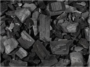 Propriétés phytothérapiques du charbon végétal