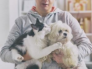Prévenir les infections et éviter les récidives chez le chien et le chat