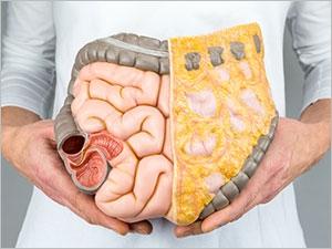 L'utilité pour la santé du microbiote