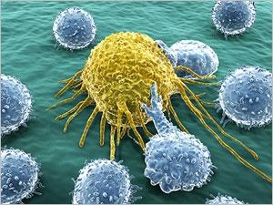 Immunothérapie : combattre le cancer par nos propres défenses immunitaires