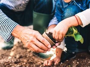 Jardiner pour lutter contre le cancer