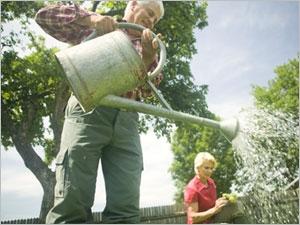 Les précautions à prendre quand vous travaillez au jardin