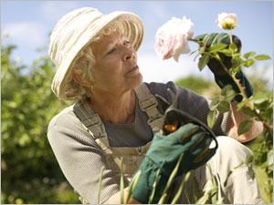 Les bienfaits des jardins thérapeutiques pour les malades d'Alzheimer