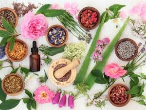 La phytothérapie pour soigner la fatigue, les insomnies et le stress
