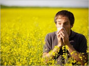 Rhinite allergique : l'autre rhume