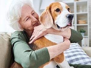 Quel animal adopter quand on est senior ?