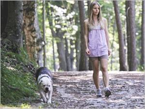 Les prrécautions à prendre pour les balades en forêt avec son chien