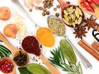 5 antibiotiques naturels sans risque de résistance microbienne