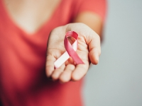 Facteurs de risques cancer du sein