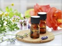 Douleurs articulaires : les bienfaits des plantes
