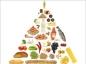 Que manger et en quelle quantité ?