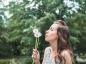 L'aromathérapie contre les allergies