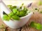 Se soigner avec la phytothérapie