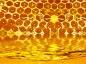 Zoom sur les produits de la ruche
