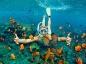 L'activité de vos prochaines vacances : le snorkeling