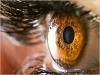 EMDR : intégration neuro-émotionnelle par les mouvements oculaires