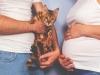 Reconnaître la toxoplasmose