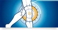Orthopédie du genou